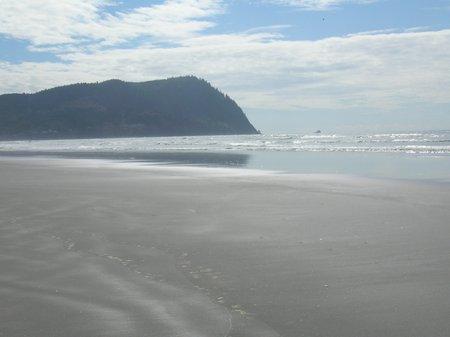 beaches1.jpg